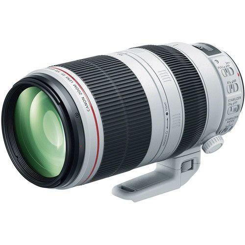 Canon EF100-400mm f/4.5-5.6L IS II USM