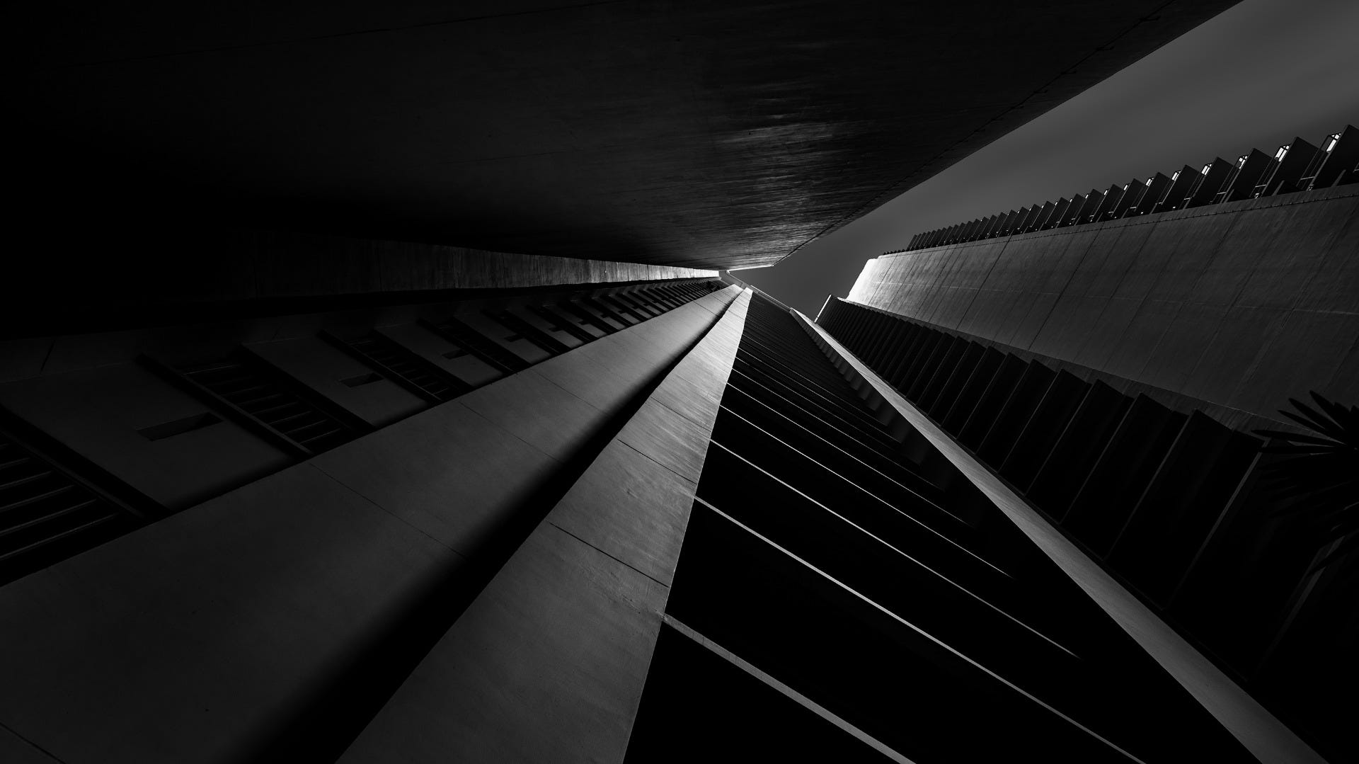 Black & White Fine Art Photography demonstrating Bug's Eye View Perspective